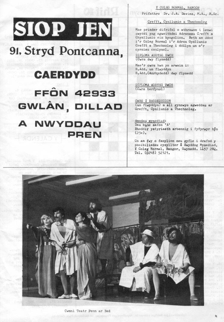 dinesydd1981m01t11